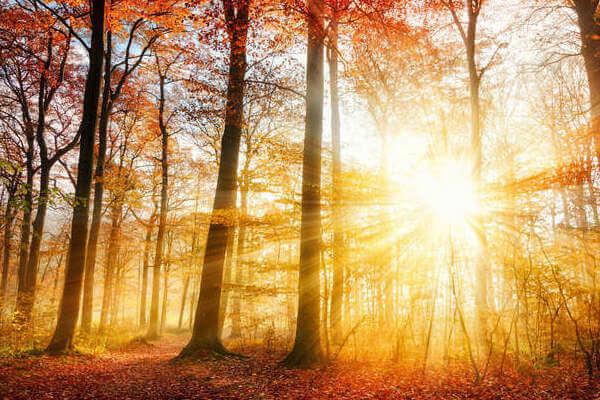 秋冬の紫外線